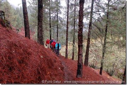 6857 Barranco Andén-Cueva Corcho(Barranco Crespo)
