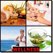 WELLNESS- 4 Pics 1 Word Answers 3 Letters