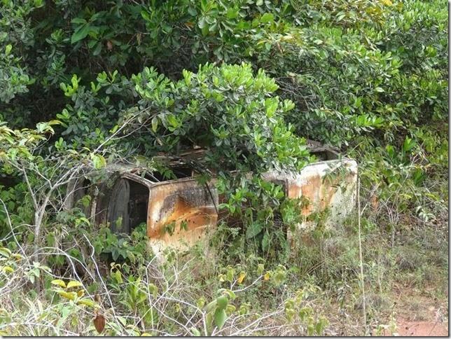BR-319_Humaita_Manaus_Day_3_DSC05667
