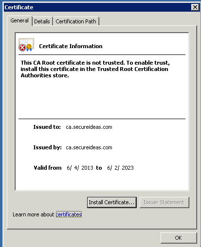 SSL Certificates: Setting Up And Authorizing The Internal