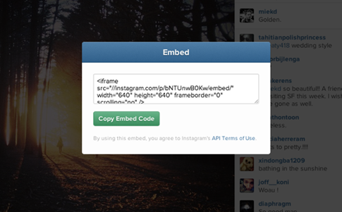 Embed Instagram - insertar videos de Instagram en mi blog