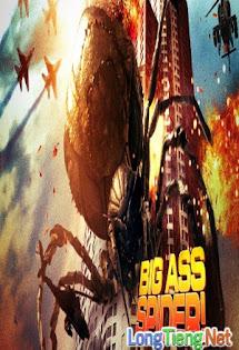 Nhện Mông To - Big Ass Spider