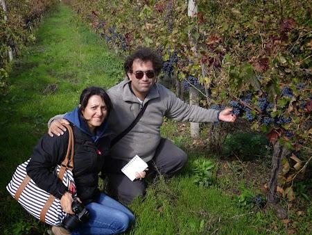 cu Viorica Ataman
