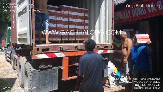 Gạch thẻ cotto 60x240 Viglacera Hạ Long