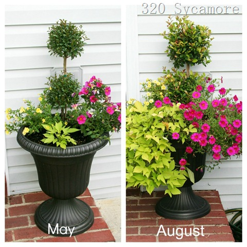 flower pot before after 1