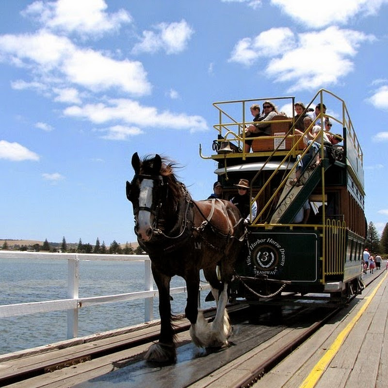 Horse Drawn Trams of Victor Harbor