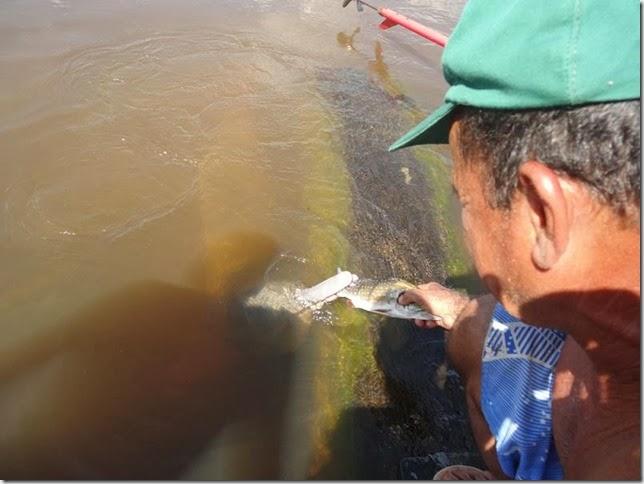 BR-319_Humaita_Manaus_Day_4_DSC05775