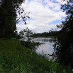 Vieux Rhône à Irigny en  aval réserve de Pierre-Bénite photo #1141