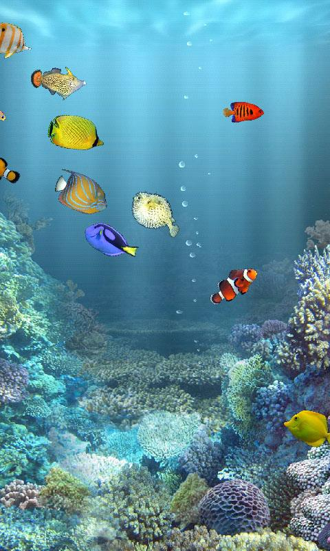 aniPet Marine Aquarium HD- screenshot
