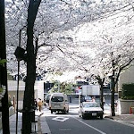 2005-04-08 005.jpg