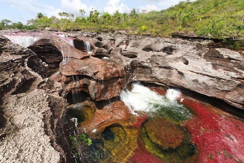 [صور] نهر الالوان الخمسة من اجمل انهار العالم cano-cristales-3%252