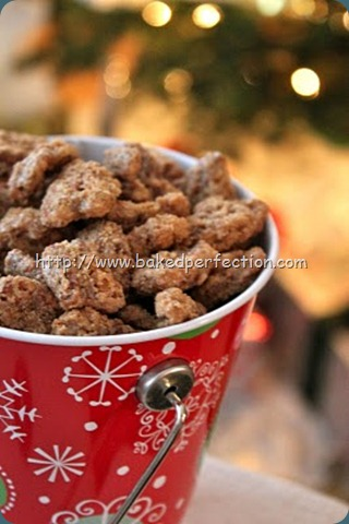 Cinnamon Sugar Nuts by Baked Perfection