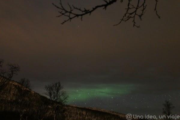 Auroras00020.jpg