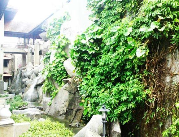 gambar muzium losong