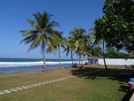 Plaje Sri Lanka: Hotel Citrus Hikkaduwa