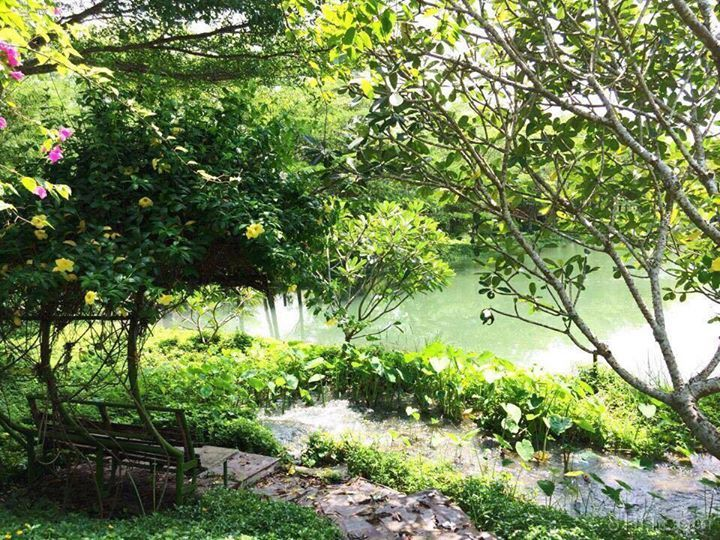 Địa điểm thơ mộng này ở ngay Sài Gòn mình đấy