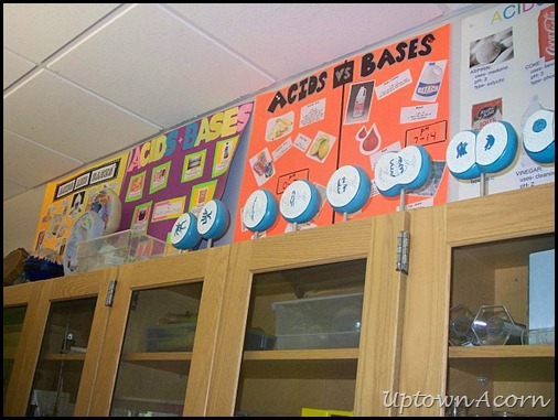 18 & The Uptown Acorn: My Science Classroom