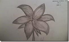 88 Gambar Arsir Flora Paling Bagus