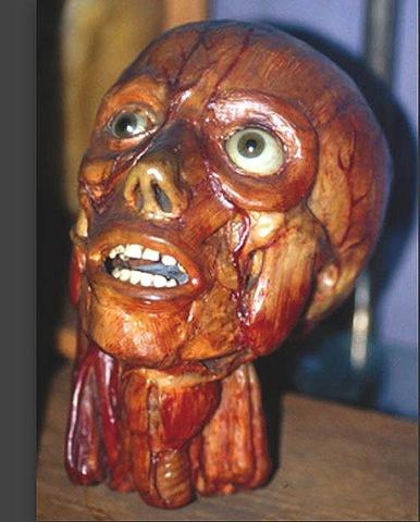 Testa spellata viva. Cera anatomica di Zumbo (Parigi)