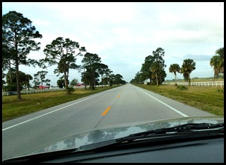 02 - Heading toward Lake Okechobee - Horse and Cattle Country