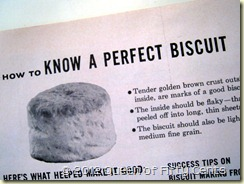 perfect biscuit
