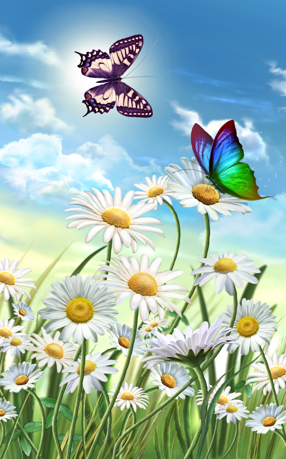 Flowers And Butterflies Summer Android Apps On Google Play