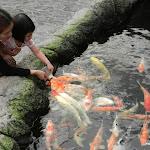 Тайланд 14.05.2012 13-27-30.jpg