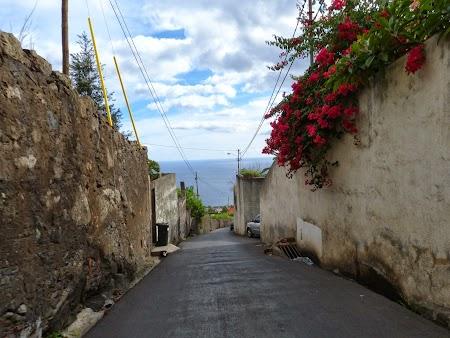 Revelion 2014:  Strazi abrupte din Funchal