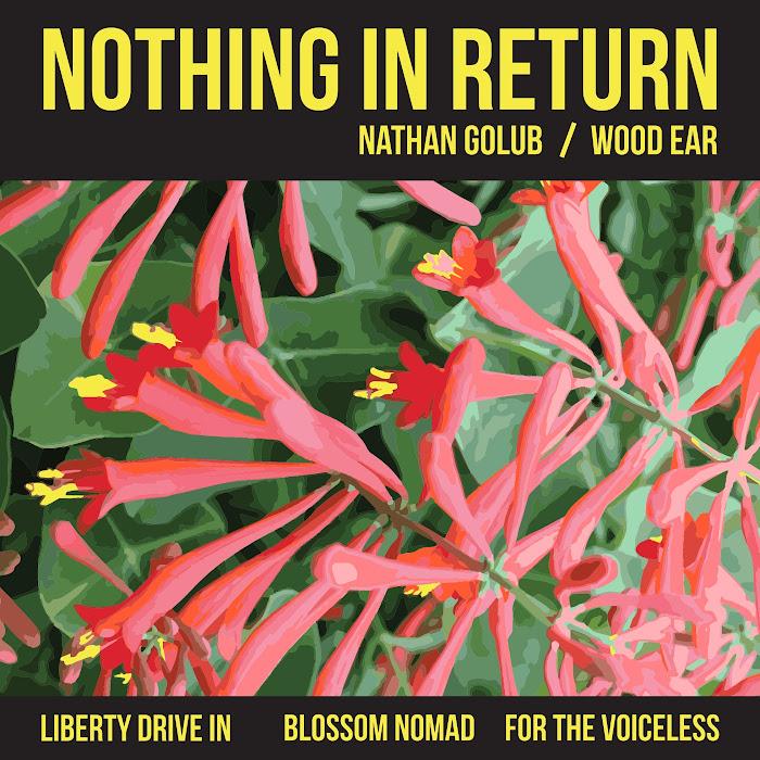 Nathan Golub / Wood Ear - Nothing in Return