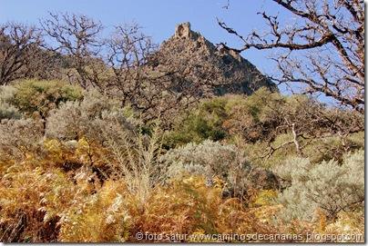 3357 Cueva Grande-Llanos Pez