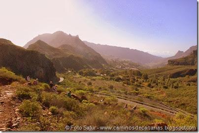 7307 Tunte-Fataga-Arteara(Valle de Fataga)