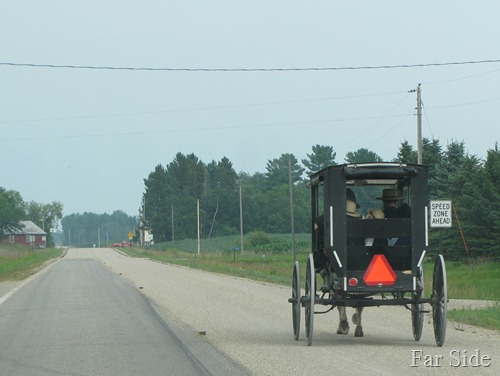 The Amish July 2012
