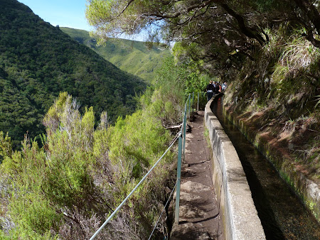 Obiective turistice Madeira: levada walk