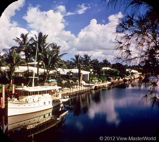 View-Master Miami and Miami Beach (A963), Scene 12: Luxury plus homes line Coral Gables Canal