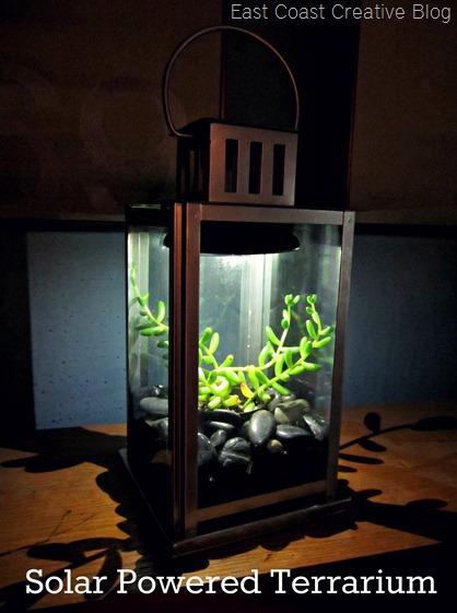 Solar Terrarium Tutorial