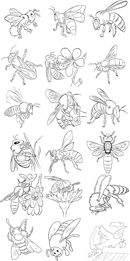 Coloring Book Bee Family Screenshot 3