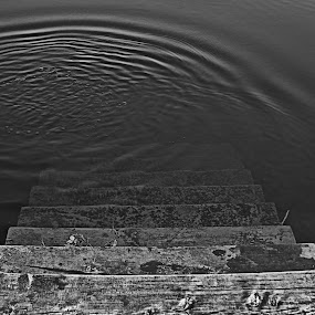 Stairway by Matevz Skerget - Black & White Objects & Still Life ( water, b&w, wood, black & white, staiway, bw )