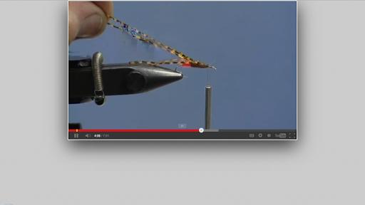 【免費運動App】Fly Fishing Encyclopedia Paid-APP點子