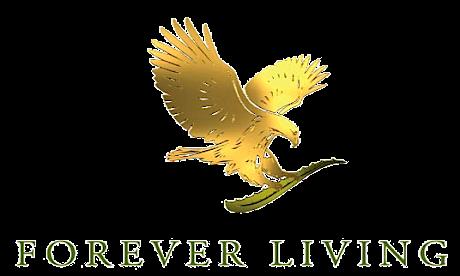 ec9bd9529 Forever Living, Comprar Produtos Pela Internet - Teclando Tudo