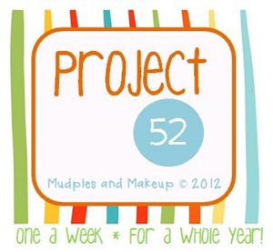 Project 52 one photo a week for the whole year