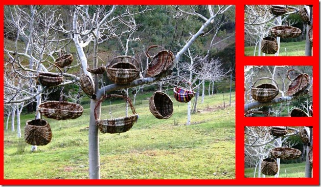 rib Basket tree
