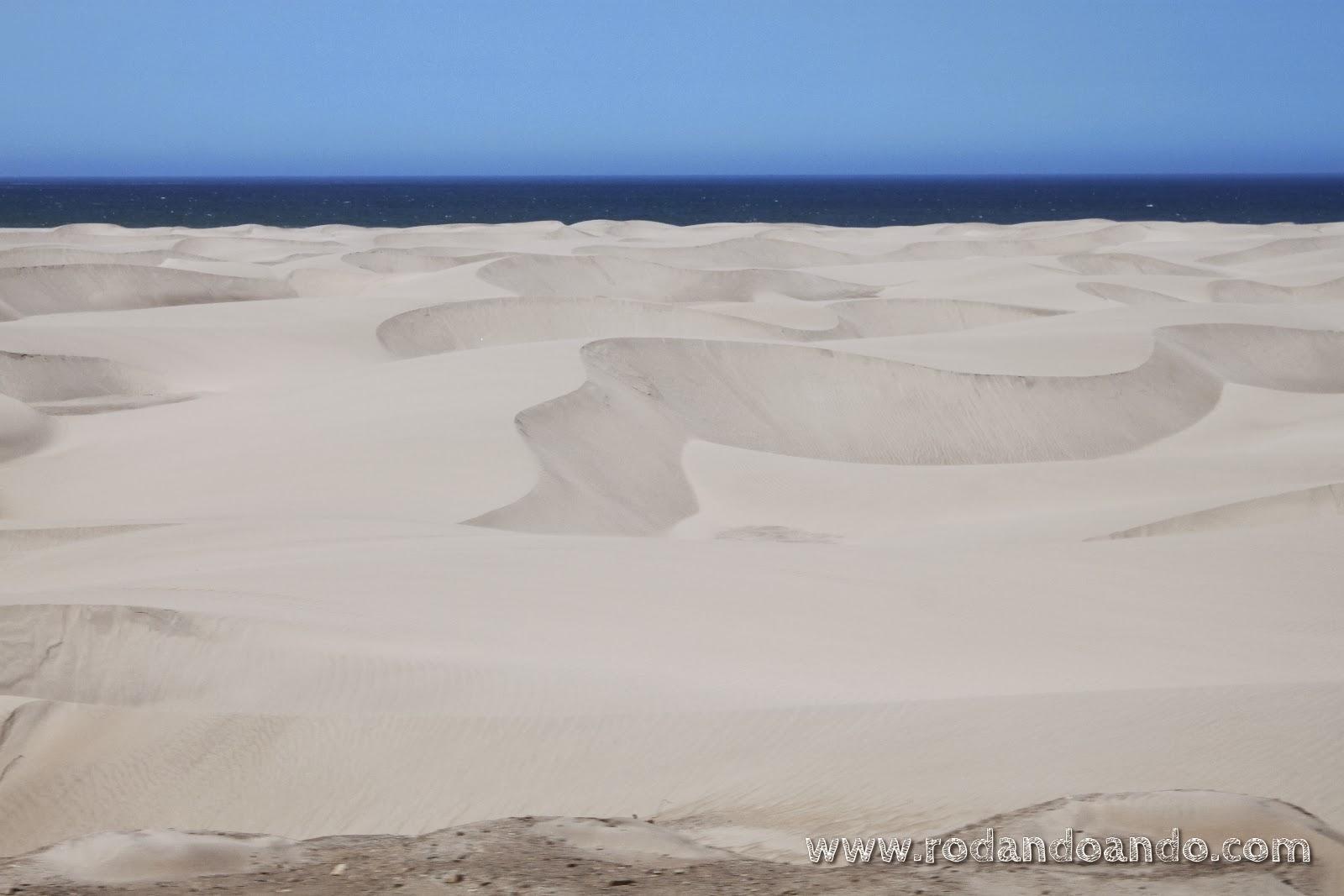 ¿Me creen que es desierto?