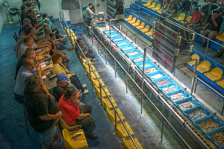 Fish market auction