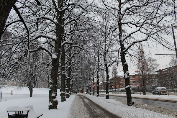 Vigeland2.jpg