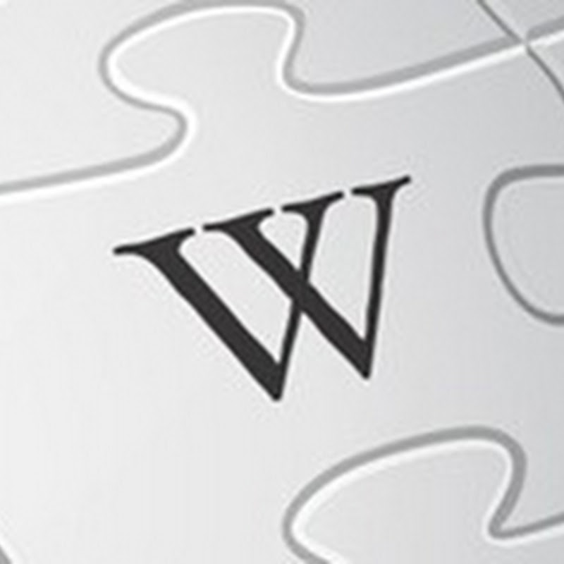 SEO Using Wiki Platforms