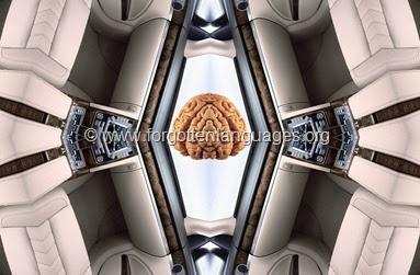 MEDIA-MRI-ROOM1