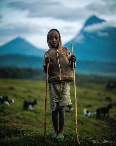 Photograph by Michael Christopher Brown from Mount Mikeno Democratic Republic of the Congo