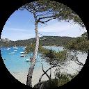 Image Google de Cécile Pibarot