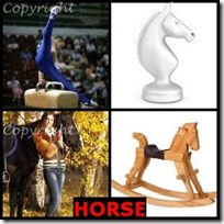HORSE- 4 Pics 1 Word Answers 3 Letters