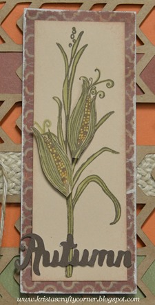 Artbooking_corn stalk_card_corn cob straight on DSC_2263